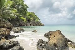 Fresh Water Bay, Providencia