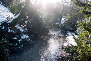 Winter 2013 (Jesmond Dene)  (18) | by Howard.