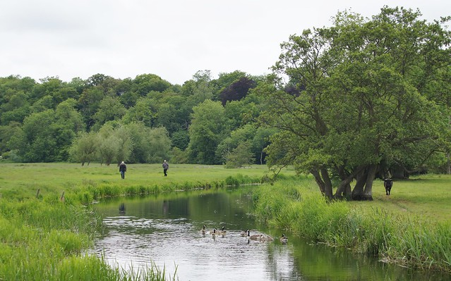 The beautiful River Waveney.