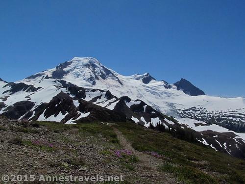 Mt. Baker from the Skyline Divide Trail, Washington