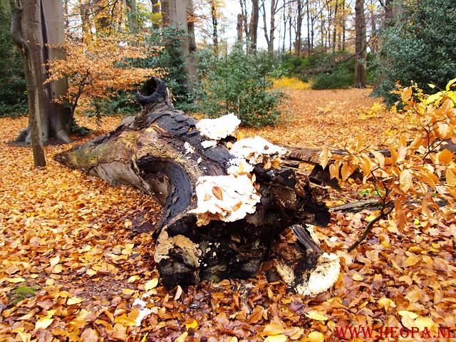 15-11-2009            Gooise lus       18.5 KM    NS Wandeltocht  (35)