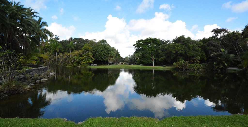 LAKE GLADE, FAIRCHILD TROPICAL BOTANICAL GARDEN