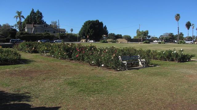 IMG_8637 Santa Barbara Mission Postel Rose Garden