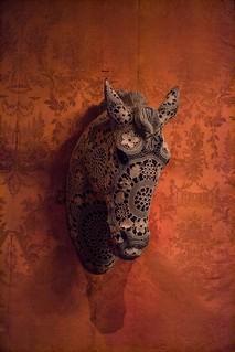 Cavalo | by filipe.gcoelho