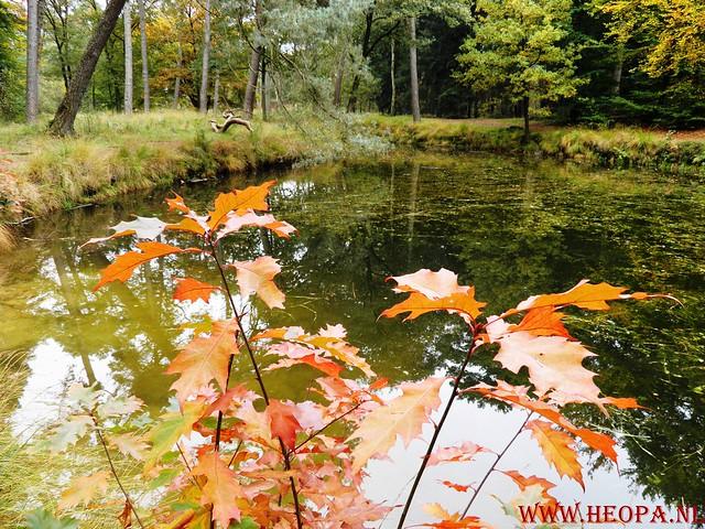 20-10-2012     Wedeblick-   Driebergen        25 Km (161)