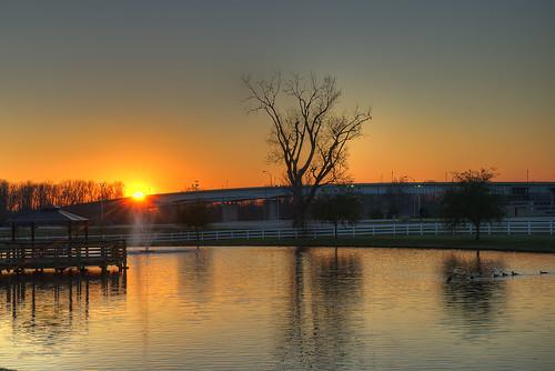 bridge roof sunset sky sun tree home fountain swimming swim fence reflections pier duck dock pond louisiana warm branches restful ducks peaceful gazebo clear va serene ripples whitefence veterans nursinghome bossiercity sonya7ii