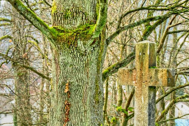 An Ancient Graveyard at Baden-Baden 01