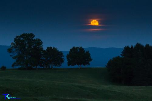 Solstice Moon | by Tim_NEK