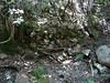 Une carbonara le long du Carciara en RD