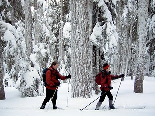 Couple Skiing at Teacup Lake, Mt Hood National Forest | by Forest Service Pacific Northwest Region