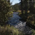 Specimen Creek