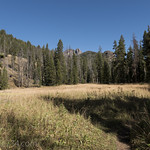 Specimen Creek Trail