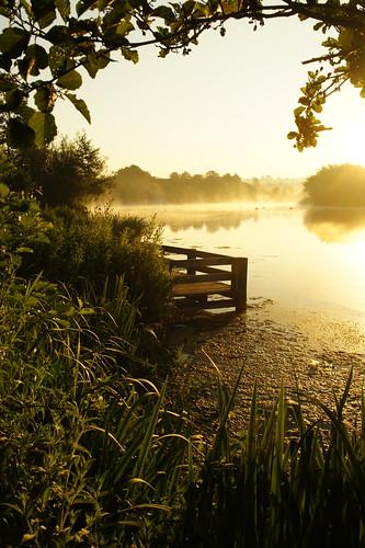 uk trees grass sunrise manchester dawn pier fishing dock oldham firstlight daisynook failsworth crimelake hollinwoodcanal