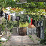 9-Telavi Guesthouse