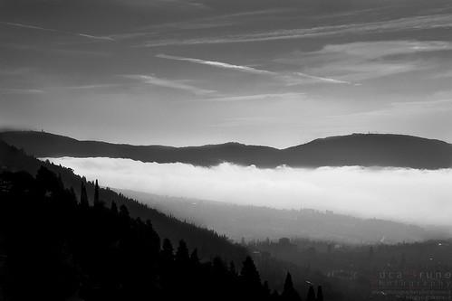Fog on Florence