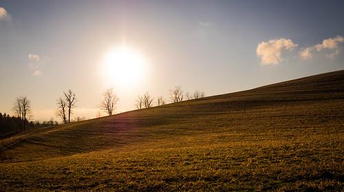 trees plants sun field clouds unitedstates pennsylvania agriculture sidman panasoniclumix20mmf17asphii