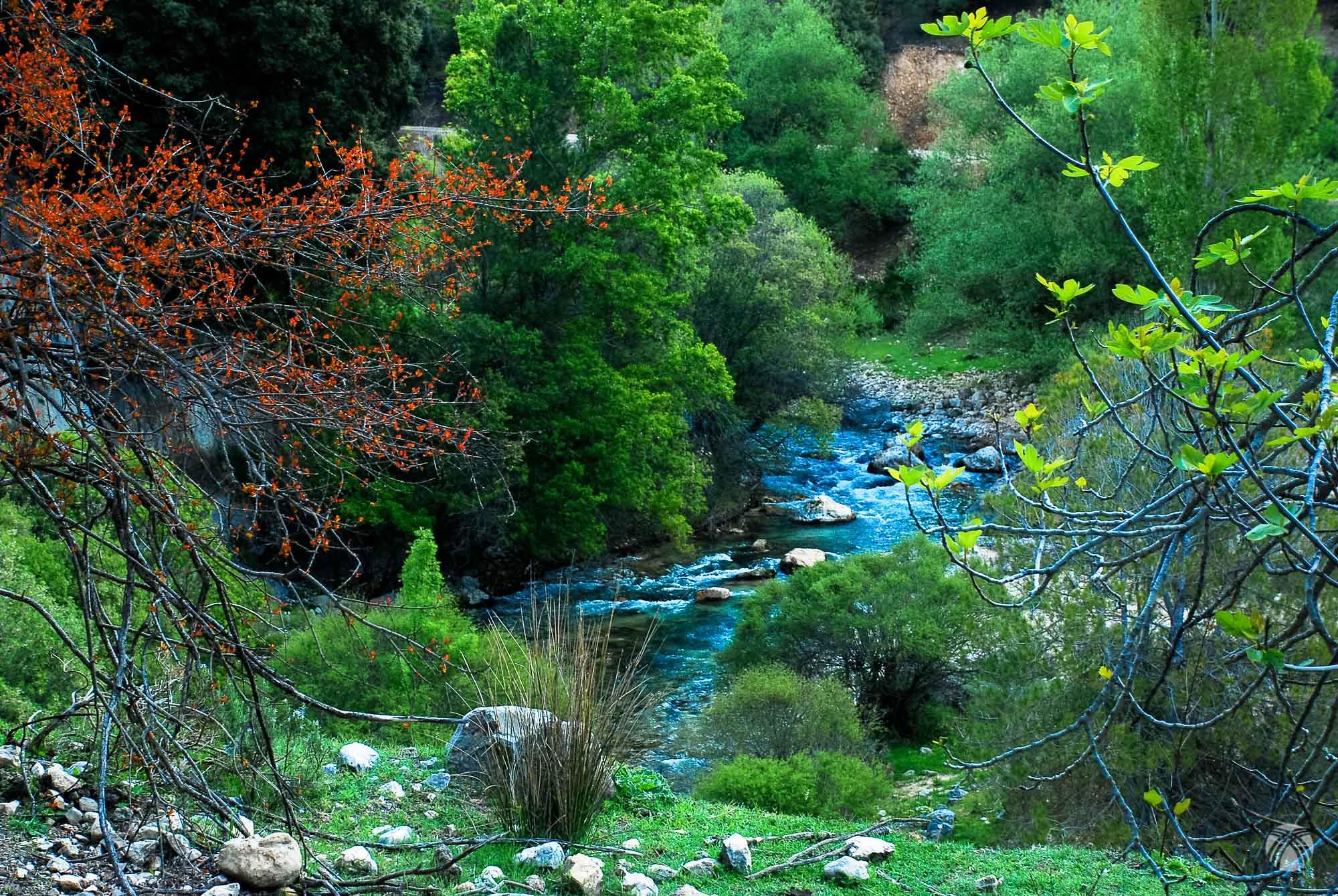 Río Castril en primavera