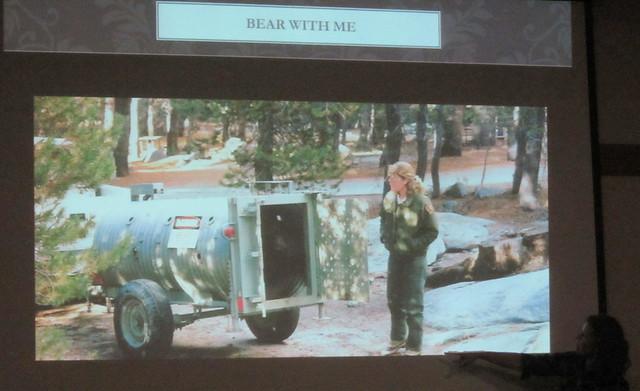 IMG_8723-001 Kate McCurdy UCSB Sedgwick bears