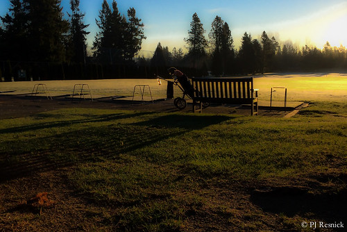 pjresnick perryjresnick ©pjresnick contrast digital iphone light shadow appleiphone black sky apple silhouette shadows phonecamera pnw pacificnorthwest drama iphone5s 5s rectangle rectangular phoneography resnick green golf drivingrange golfclubs fairwoodgolfandcountryclub newyearsday january12015 1115 wintergolf bench fence grass turf sunrise morning oddsandends outdoor serene field landscape pjresnickgmailcom pjresnickphotographygmailcom