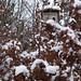 Naučná stezka Husín, foto: Petr Nejedlý