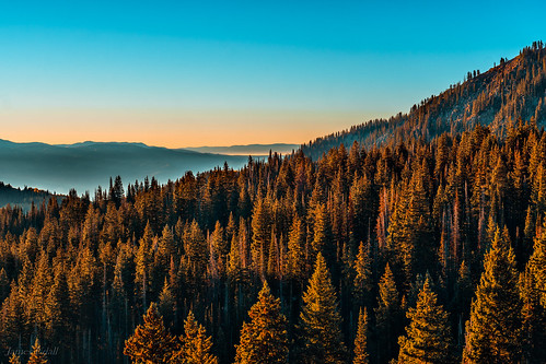 city trees usa lake mountains pine sunrise utah wasatch brighton solitude unitedstates horizon salt alta midway canyons parkcity snowbird guardsman guardsmanpass