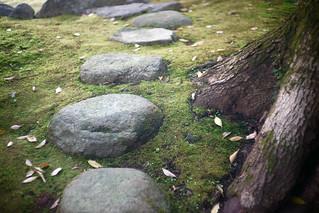 Stepping stone | by haru__q