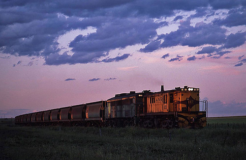 train diesel transport grain engine rail railway australia anr an transportation locomotive southaustralia freight sar alco 839 kapunda roseworthy australiannational dl531 rpausa830 railpage:class=33 rpausa830839 railpage:loco=839