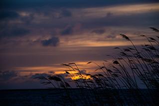 Dawn | by Infomastern