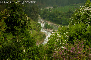 Barot (15) | by travelling slacker