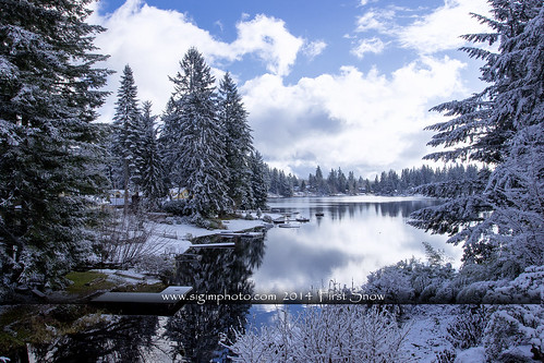 trees lake snow home water weather birds clouds rural landscape outdoors view washingtonstate beatiful duvall standout lakemargaret duvallwashington