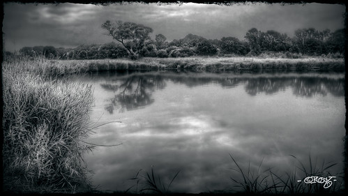 morning blackandwhite bw monochrome mono pond hdr cunninghamlake