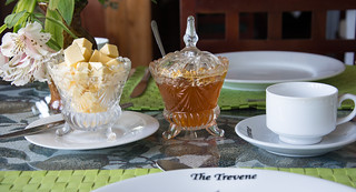 Sri Lanka. Nuwara Eliya. The Trevene.