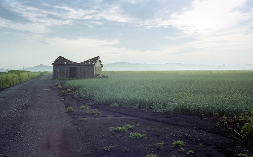 county new york orange ny black texture abandoned film fog sunrise 35mm canon landscape kodak farm farming rustic shed onions dirt valley hudson region canonet ql17 fag alluring portra400