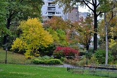 Central Park-East Green, 11.01.14