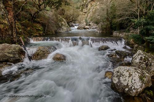 blur tree portugal water landscape stones cascade leiria fragas bluring figueiródosvinhos ssimão luisascenso