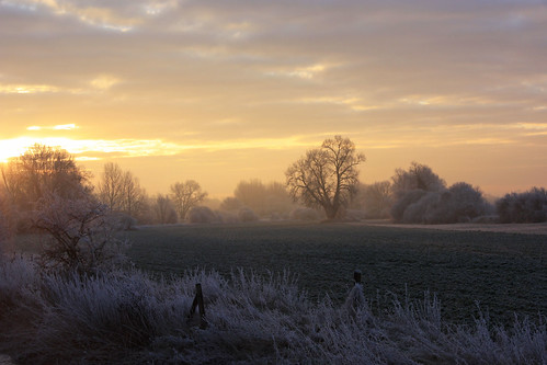 morning trees winter light sky sun ice sunrise frost fields flickrsbest eaely