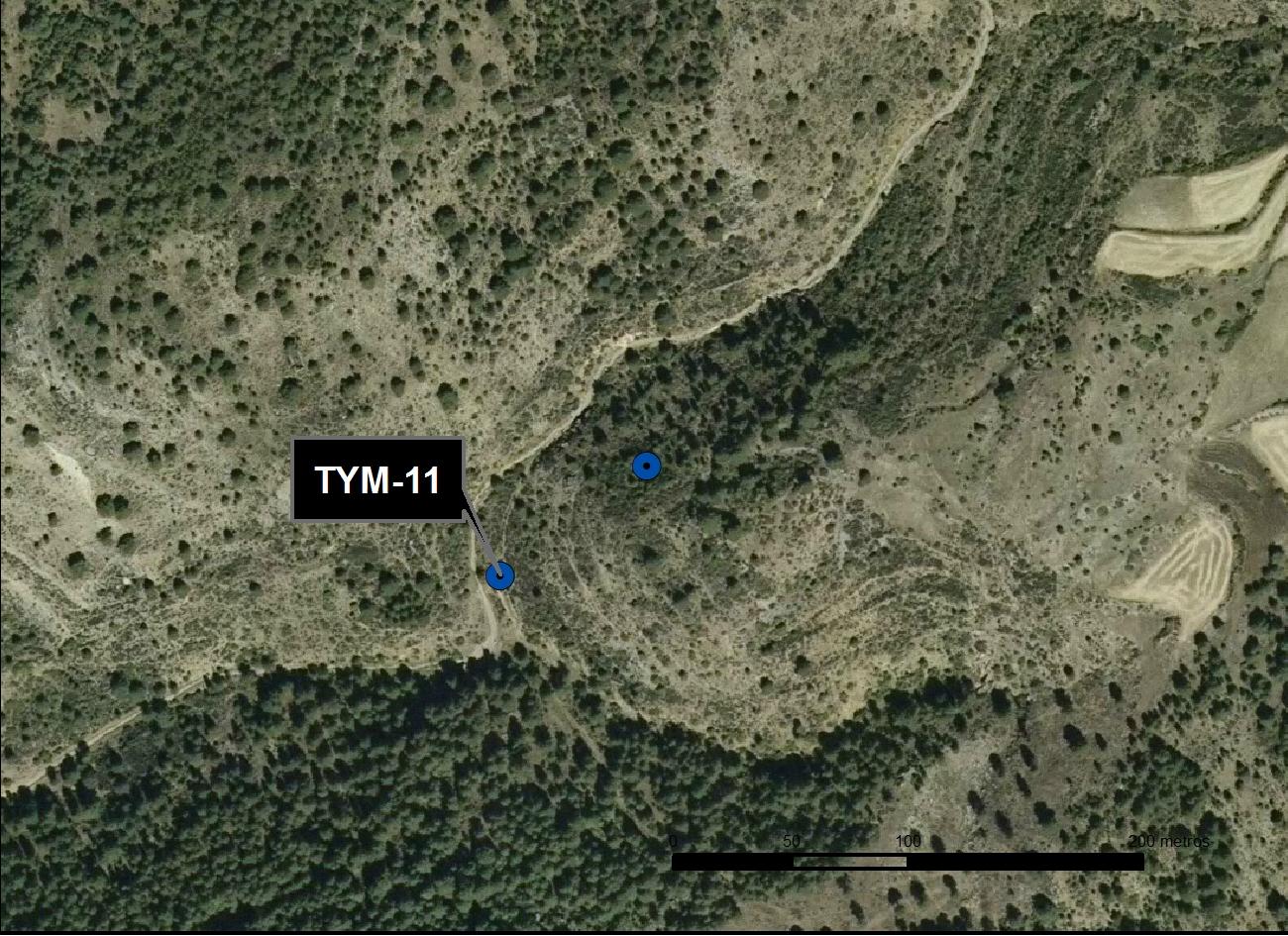 TYM_11_M.V.LOZANO_MORO_ORTO 1