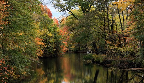 autumn trees fall river landscape pastoral waterreflection cranford nomaheganpark