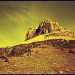 Kodak Portra 160NC  - Redscale