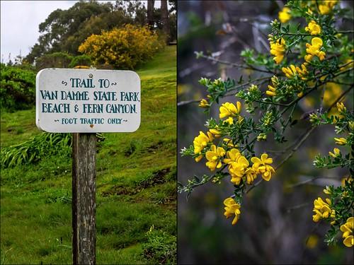 Van Damme Trail | by Weekend del Sol