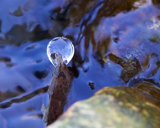 Frozen Ice Lens on Leaf | by bbum