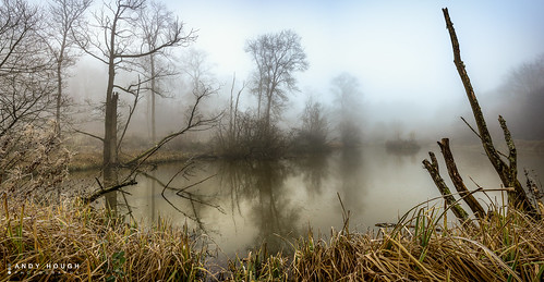 trees winter england panorama plants mist reflection nature water reflections unitedkingdom sony stitching wallingford southoxfordshire a99 sonyalpha andyhough earthtrust slta99v littlewittenhamwood andyhoughphotography