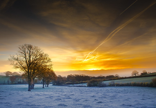 morning november blue autumn trees light england sky cold color tree nature beautiful clouds rural sunrise canon landscape golden landscapes countryside frozen frost gloucestershire autumnal treescape canonef2470mmf4lisusm canon6d ericgoncalves
