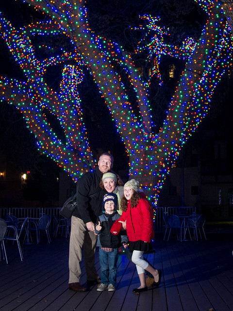 Family by Well Lit Trees
