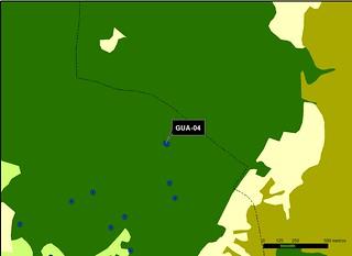 GUA_04_M.V.LOZANO_CERRAJA_MAP.VEG