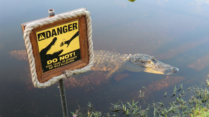 Everglades Safari Park @ Southeast Florida