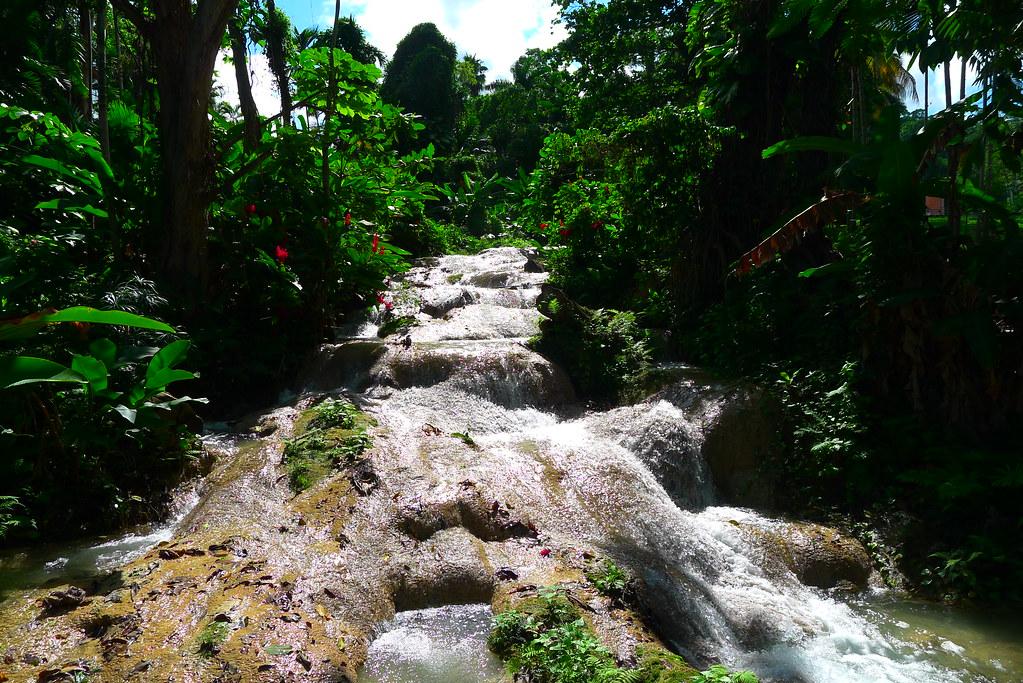 """Résultat de recherche d'images pour """"The Turtle River Falls jamaica"""""""