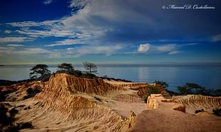 Broken Hill, Torrey Pines CA.