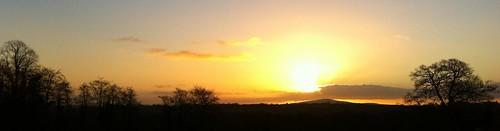 trees ireland sky panorama irish silhouette clouds sunrise countryside cork newmarket iphone4 ilobsterit mounthilary