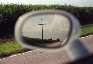 Roosting (Leicaflex SL, 60mm Elmarit, Kodak Gold 200) | by PositiveAboutNegatives